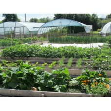 The complete Organic Kitchen Garden  with Ingrid, Phil, Hans and Gaby on Saturday 14th and Sunday 15th April 2018