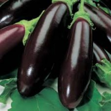 Organic Aubergine Long Purple