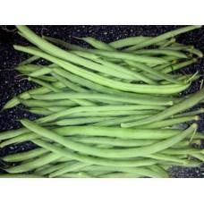 Organic Beans Climbing French Cobra