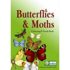 Butterflies and Moths Colouring and Guide Book