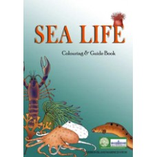 Sea Life Colouring and Guide Book