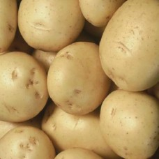 Organic Colleen Potatoes