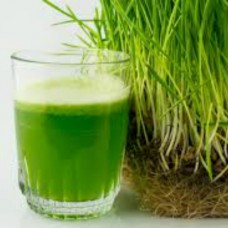 Organic Wheatgrass Grain