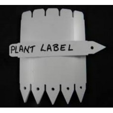 Plastic Plant Labels 4""