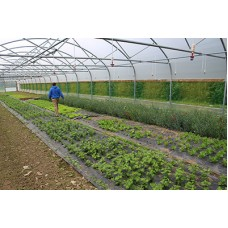 Profitable Polytunnels (Saturday May 30th)