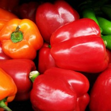 Organic Peppers Sweet Tamar Mix