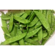 Organic Pea  (Mange Tout) - Dwarf  Sweet Green