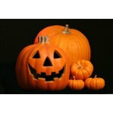 Organic Squash/Pumpkin Jack O' Lantern