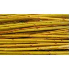 Organic Willow Vittelina