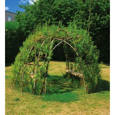 Willow Sculptures, Fedges and Domes (Saturday February 14th 2021) Tom O'Brien