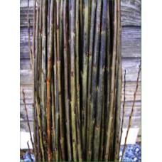 Organic Willow Packing Twine
